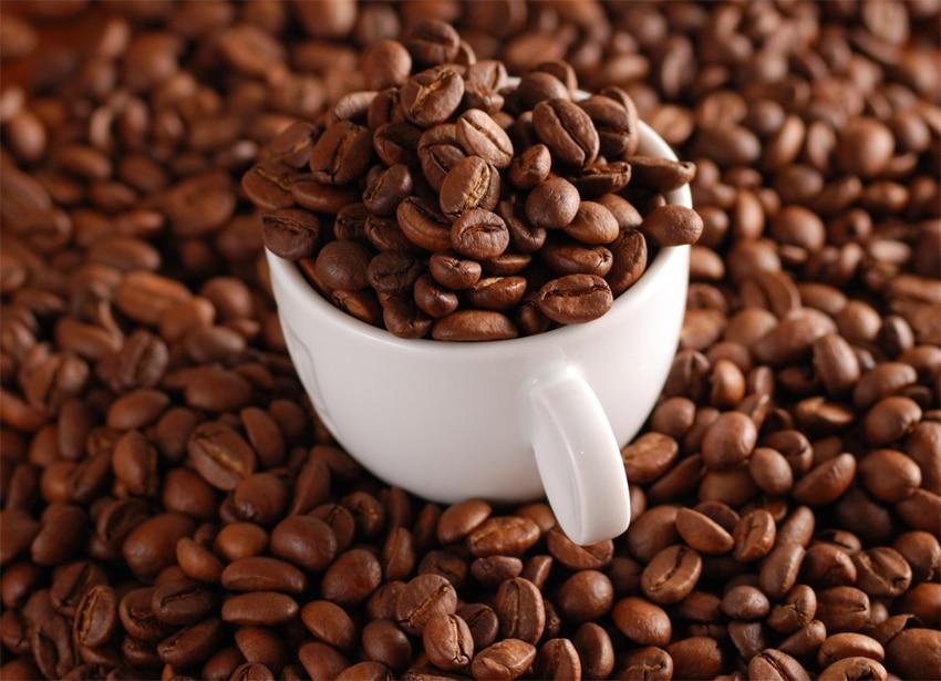 Comment choisir son café en grains pour un expresso broyeur ?